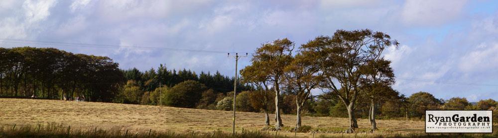 RuralPrint09