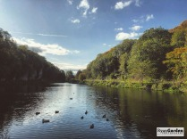 CreswellCrags02