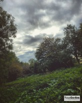 CreswellCrags04