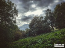 CreswellCrags06