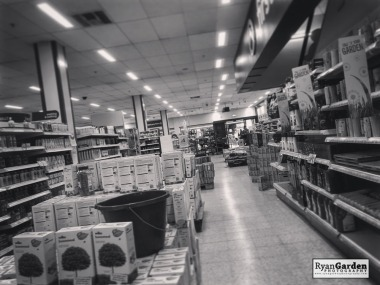 ShoppingInLockdown08