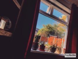 Window06