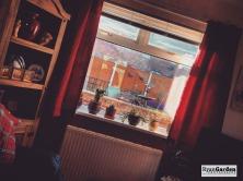 Window07